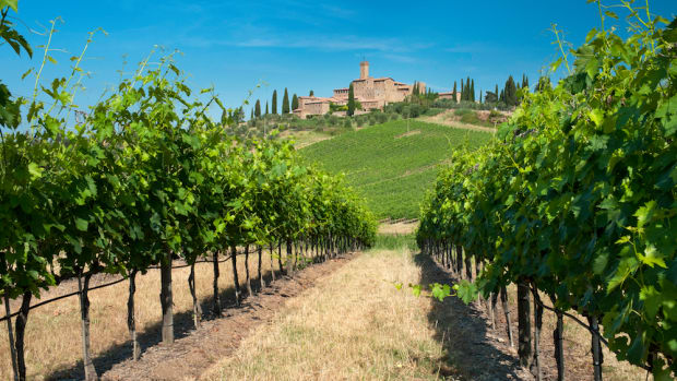 Where to go organic wine tasting in Italy