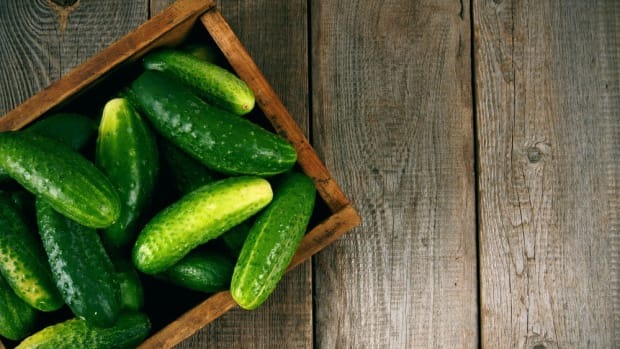 growing cucumbers for diverse tastes