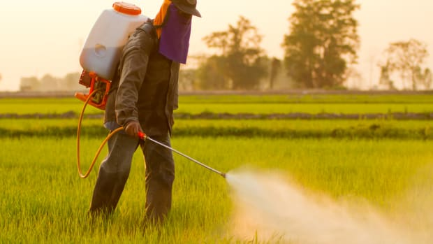 pesticides may cause lou gherig disease