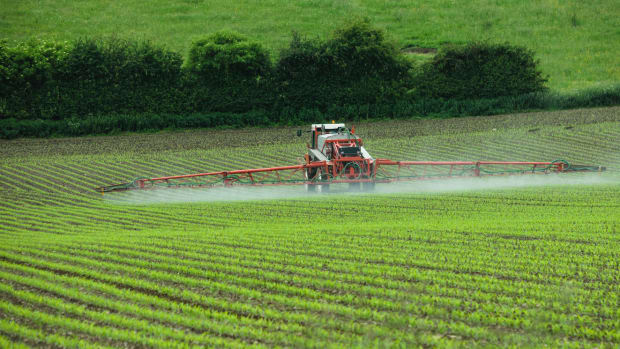 Call for Stricter Regulations on Herbicides as Federal Testing for Glyphosate in Food Resumes