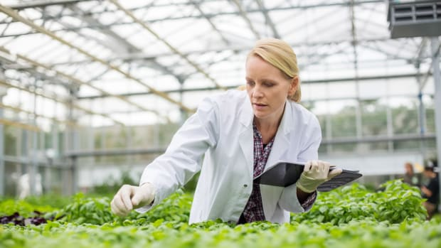 How Does the Biotech Industry Control What We Know About GMOs?