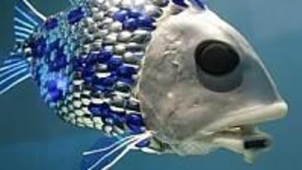 robofish3