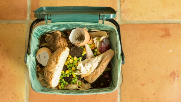 4 Startups Solving America's Food Waste Problem