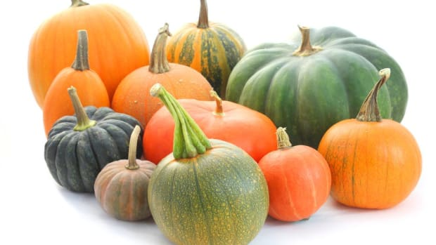 heirloom pumpkin varieties