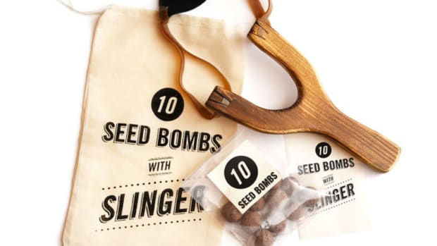 Homemade seed bombs.