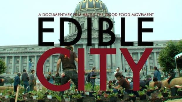 Edible City is coming to a screen near you.