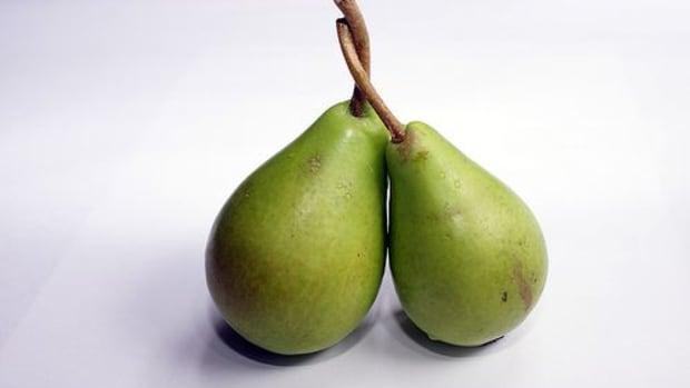 pears-Fabo-Fos