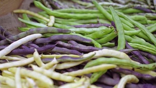 beans-ccflcr-skanska-Matupplevelser