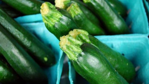zucchini-ccflcr-alice_henneman