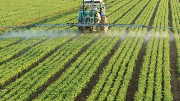 Did the USDA Suppress Science on the Effects of Pesticides?