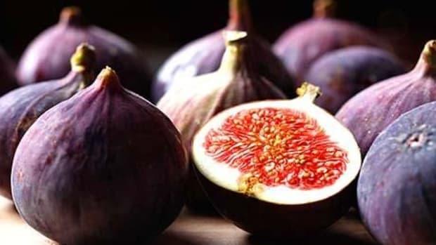 figsfof