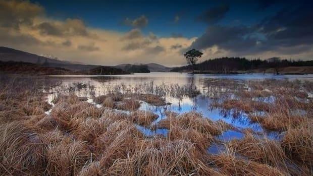 landscape-ccflcr-mike138