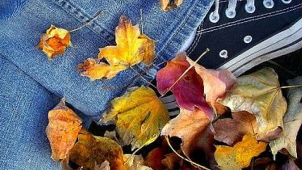 fall_leaves_foot_greencandy8888