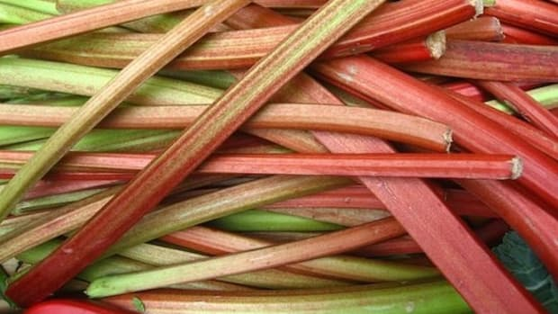 rhubarb-stalks