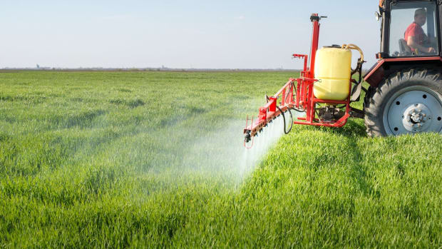 Dicamba Might Be Even More Dangerous Than Glyphosate
