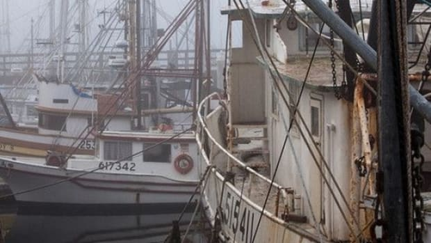 fishingboat-ccflcr-mikebaird