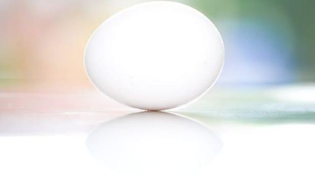 egg-ccflcr-steveajohnson