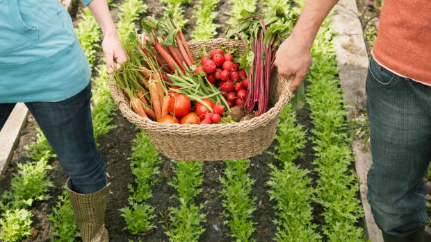 Man and woman carrying vegetables in basket