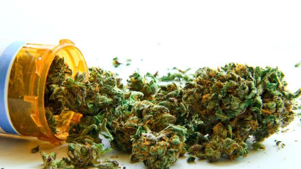 Is Your Medicinal Marijuana Laced With Pesticides?