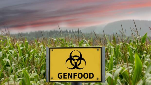 U.S. Earmarks $3M to Promote GMOs