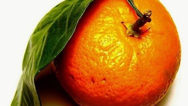 tangerine-ccflcr-DarwinBell1
