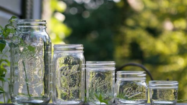 mason-jars-ccflcr-Chiots-Run