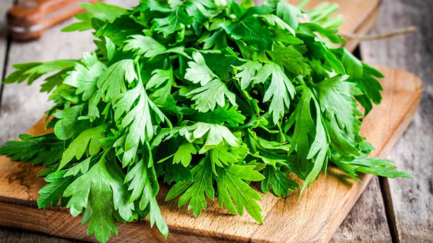 Mexican Cilantro Fields Double as Toilets, FDA Bans Imports