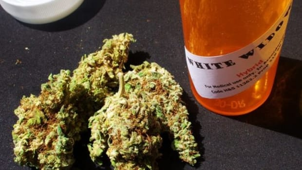 medicalmarijuana-ccflcr-eggrole