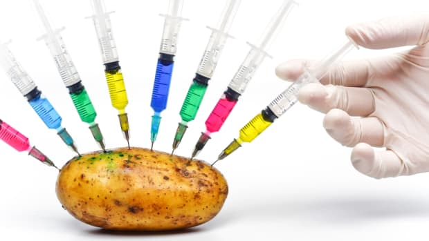 USDA Approves Second Variety of Simplot's GMO Potatoes
