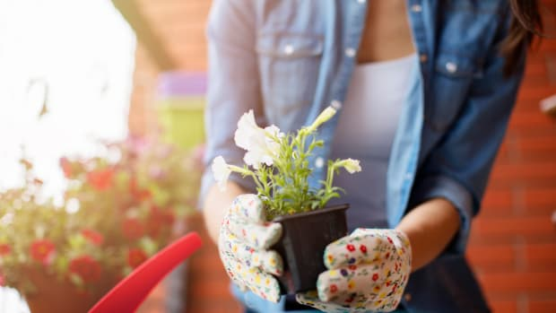 7 Pretty Garden Accessories