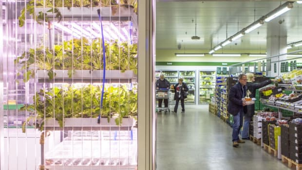 Indoor Urban Farming Puts the 'Grow' in Grocery Store for a Berlin Supermarket