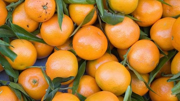 clementines-ccflcr-paul-and-jill