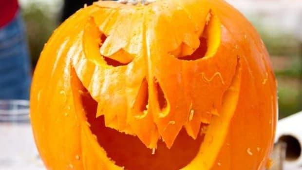 pumpkin-ccflcr-Morten-Rand-Hendrickson