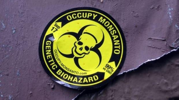 occupymonsanto-ccflcr-Daquella-manera