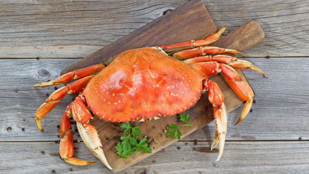 Amnesic Shellfish Poisoning Linked to California's Dungeness Crabs