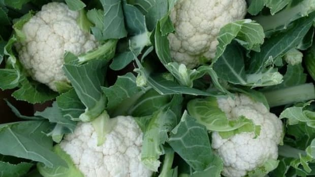cauliflower-ccflcr-NickSaltmarsh