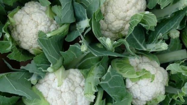 cauliflower-ccflcr-NickSaltmarsh