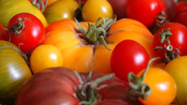heirloom-tomatoes1