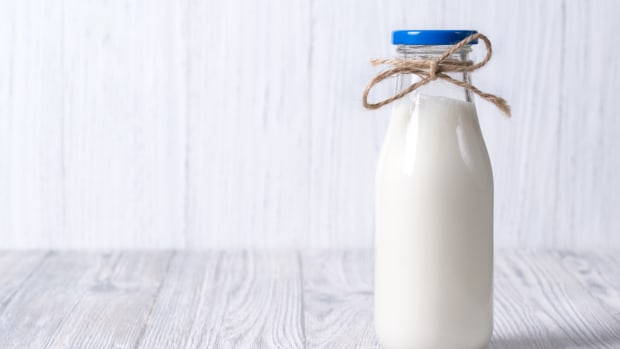 Plant Protein Milk: The Best Thing Since Almond Milk (Only Better)