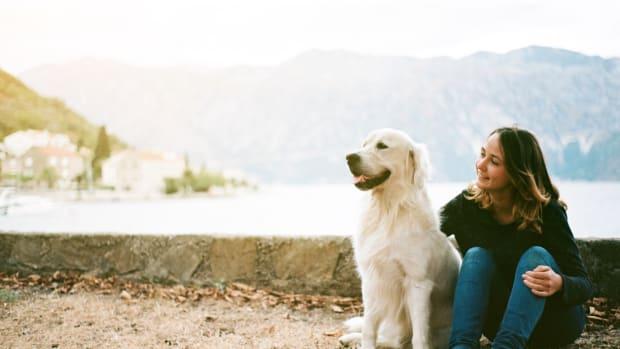 8 Epic Dog Parks