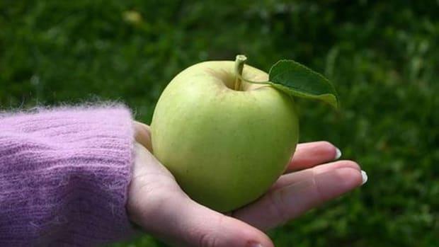 apple-ccflcr-nightthree