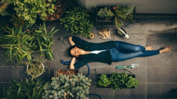 5 apartment balcony gardening tips