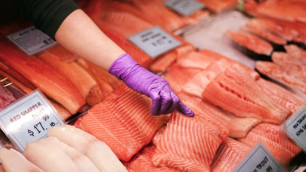 Downstream Environmental Risks the Latest GMO Salmon Setback