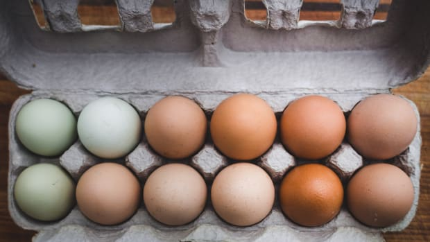 green and brown eggs in an egg carton