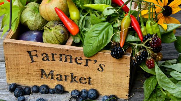 ingredients for green gazpacho salad recipe in farmers market box