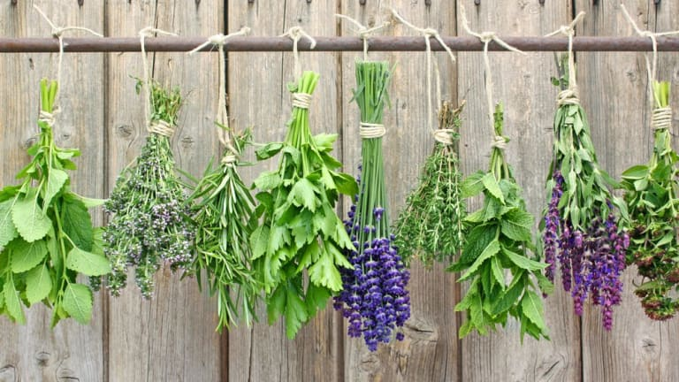 How to Dry Herbs at Home: The 3 Best Ways to Preserve Color, Freshness, and Aroma