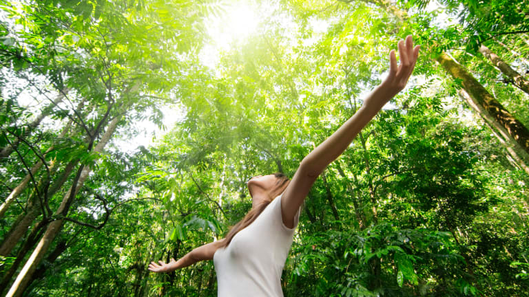 Forest Bathing: The Secret to Health and Happiness?