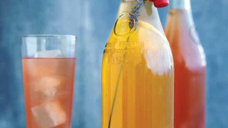 Holiday Spice Kombucha Recipe