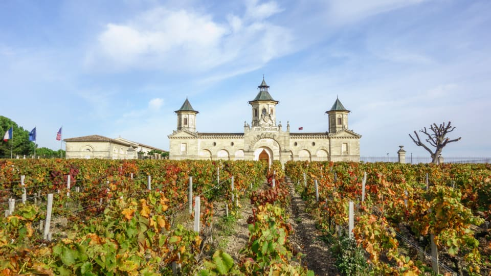 A Wine Lover's Dream, Bordeaux's Organic and Biodynamic Renaissance