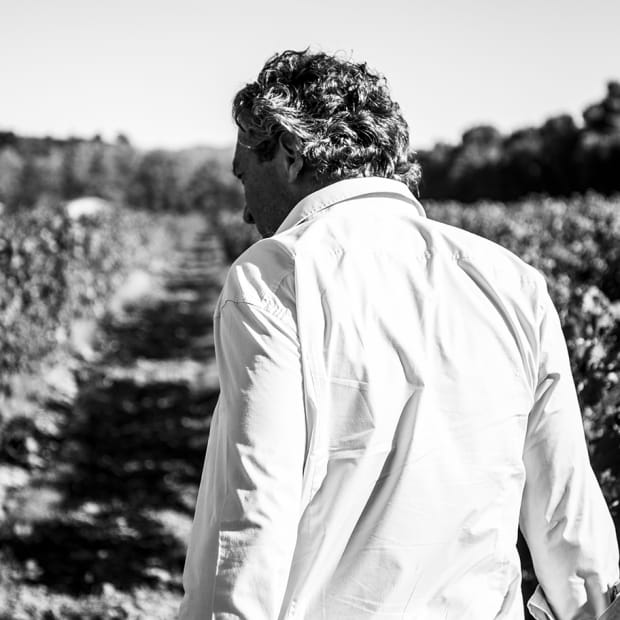 Gerard Bertrand Biodynamic Wines